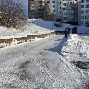ziemos-darbai-7